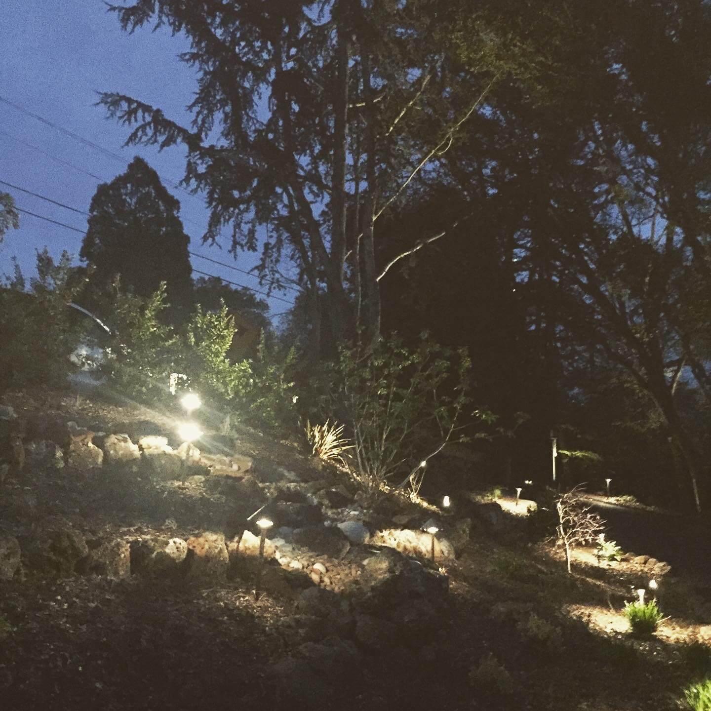 Orinda Oaks: Oak Forest With Outdoor Lighting